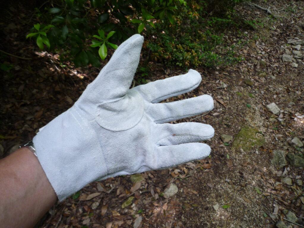 白石山の下山に「引廻し方面」を選ぶなら皮手袋が必須