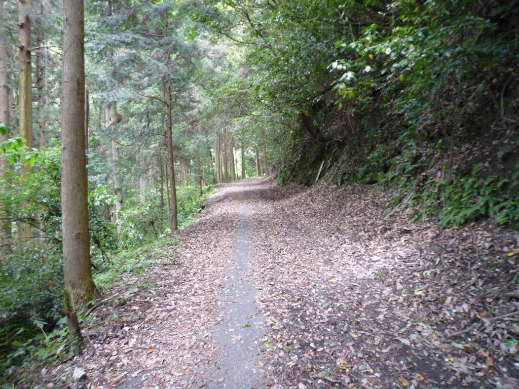 錦鶏の滝までの道