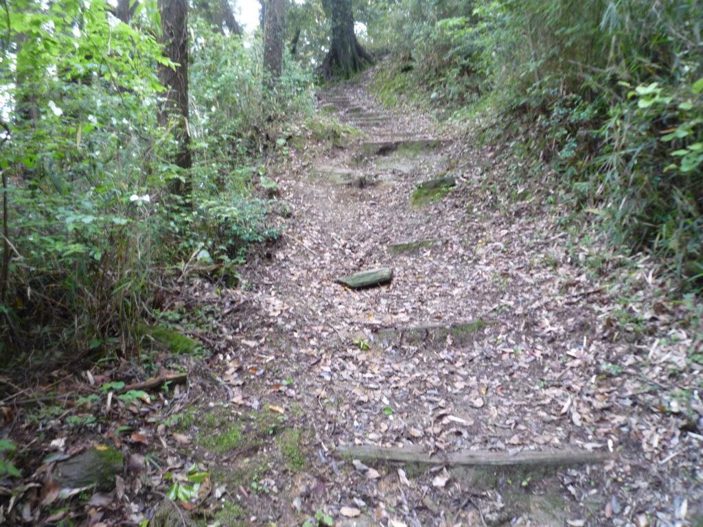 高嶺城跡手前の緩い坂