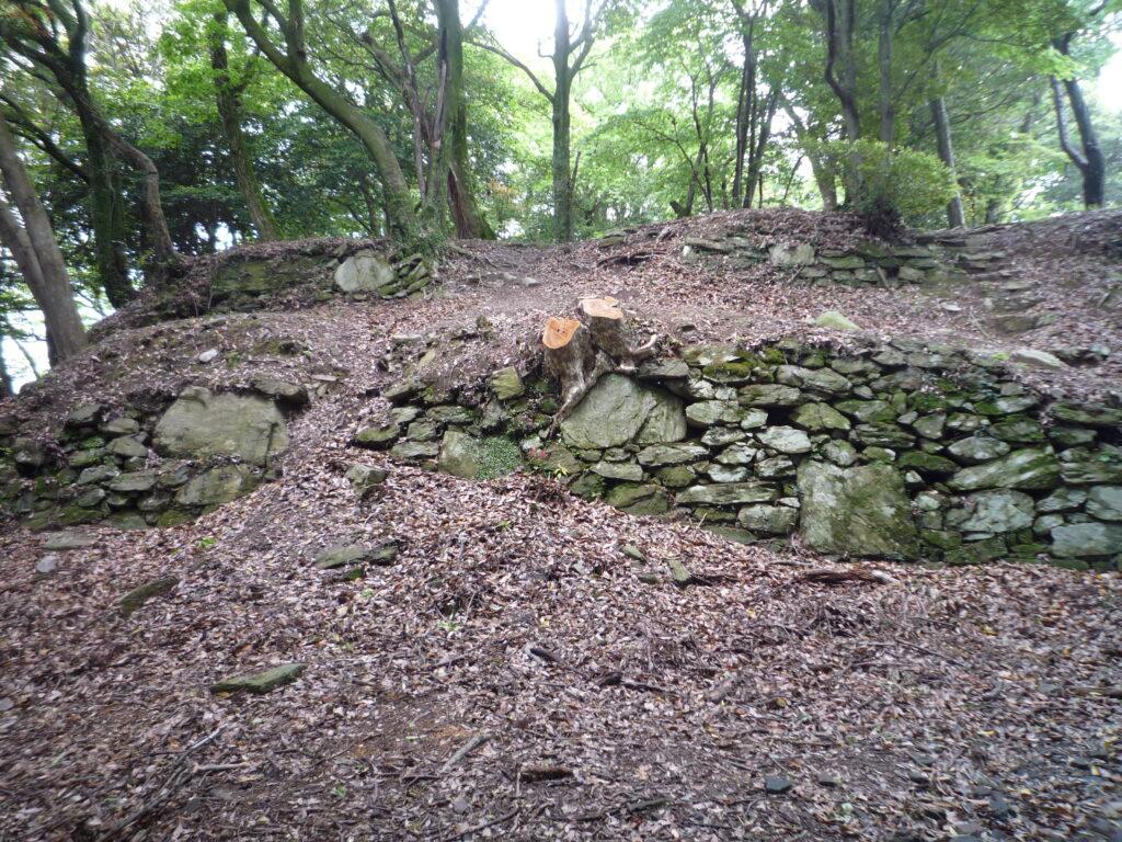 高嶺城主郭南側の石垣