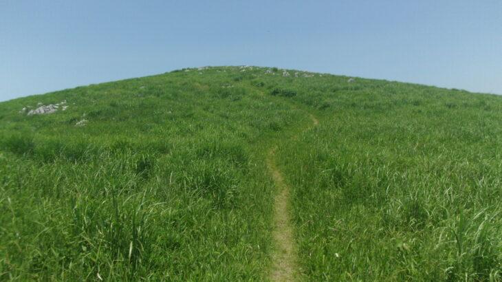 【山口県百名山】龍護峰、これぞハイキング!