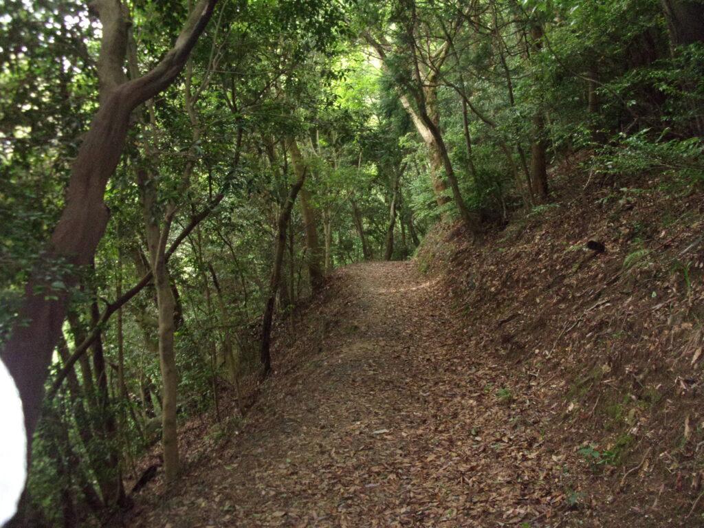 岩屋権現様へのルート