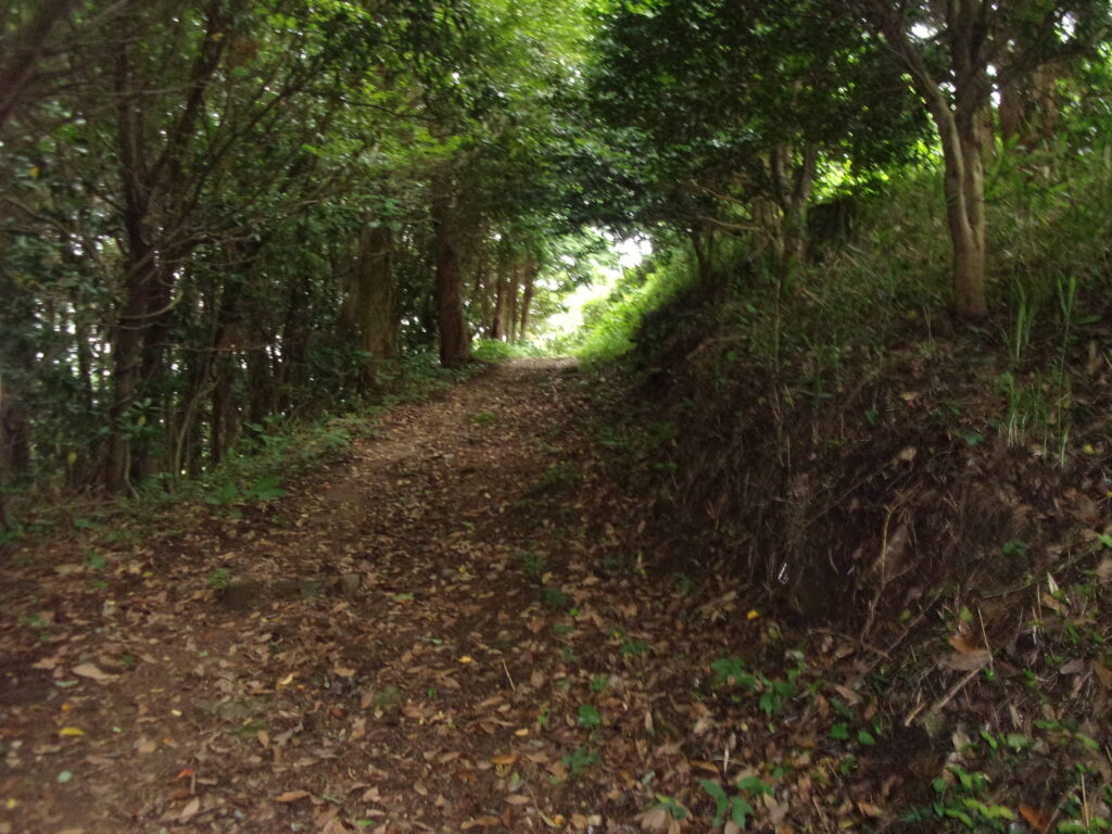文珠山への道