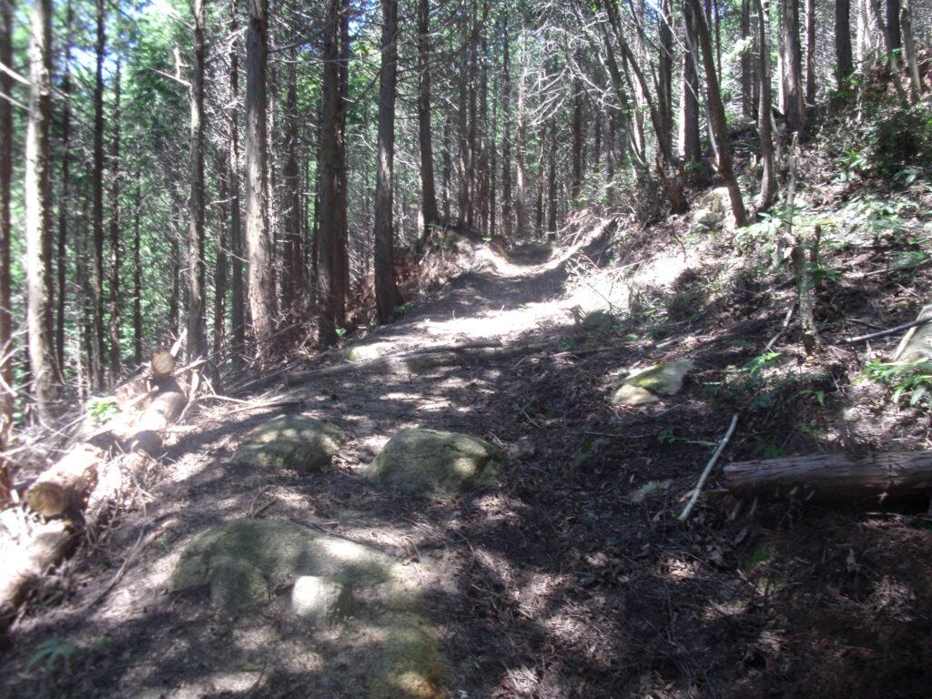男山への登山道