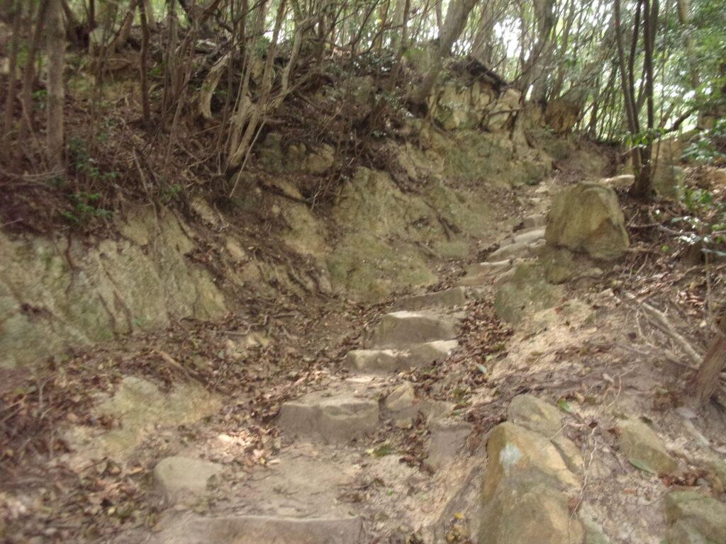 四王司山 登山道