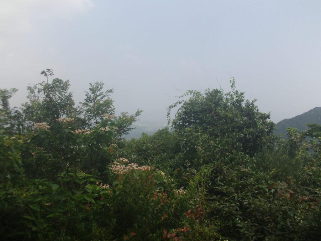 勝山山頂 看板からの景色
