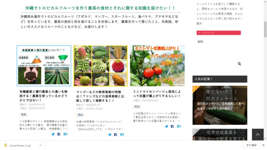 糸満フルーツ園 けんちゃん 最高のフルーツ・野菜を自分の手で作り,農の魅力を伝えていきたい!