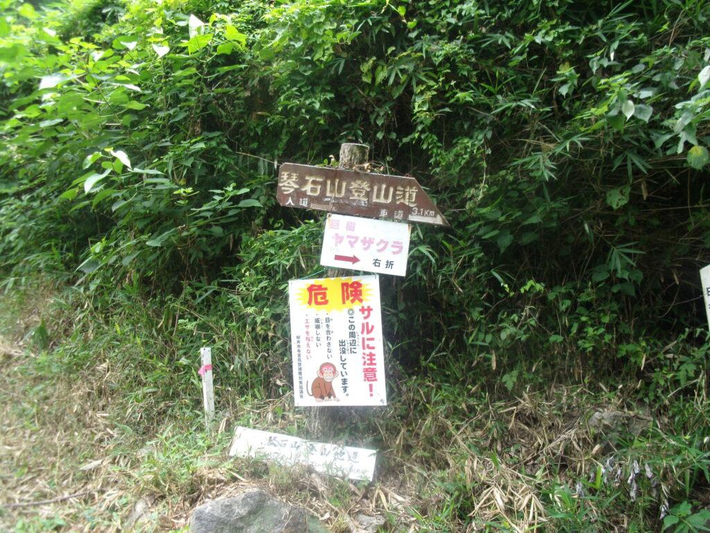 琴石山登山道 道標