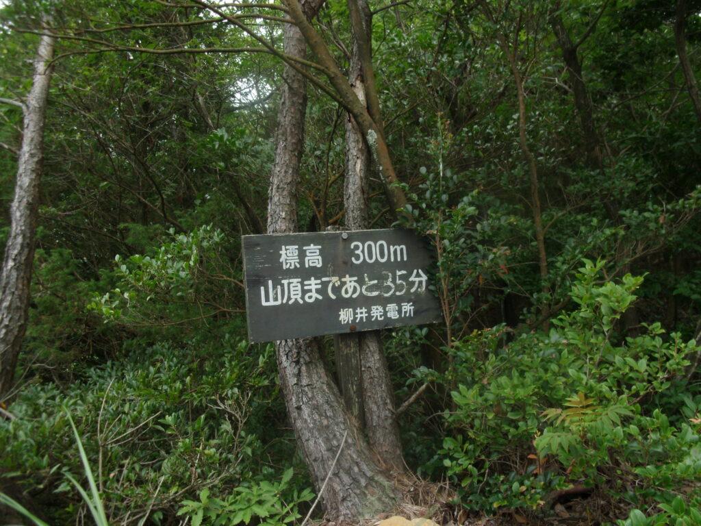 琴石山登山道