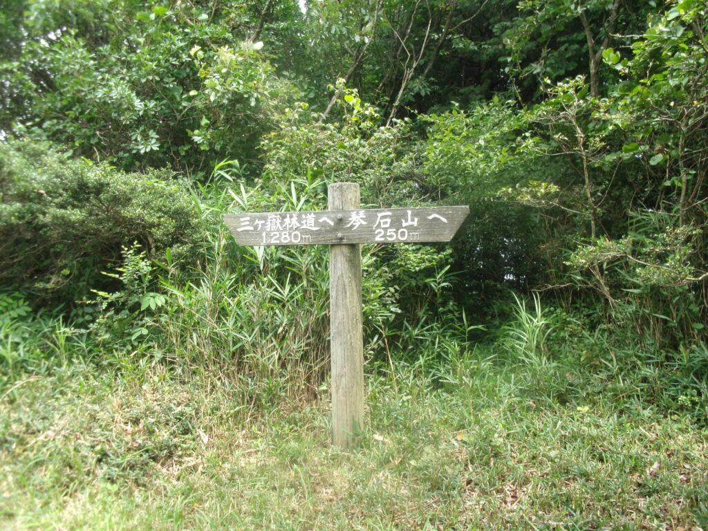 三ヶ嶽林道と琴石山への分岐点