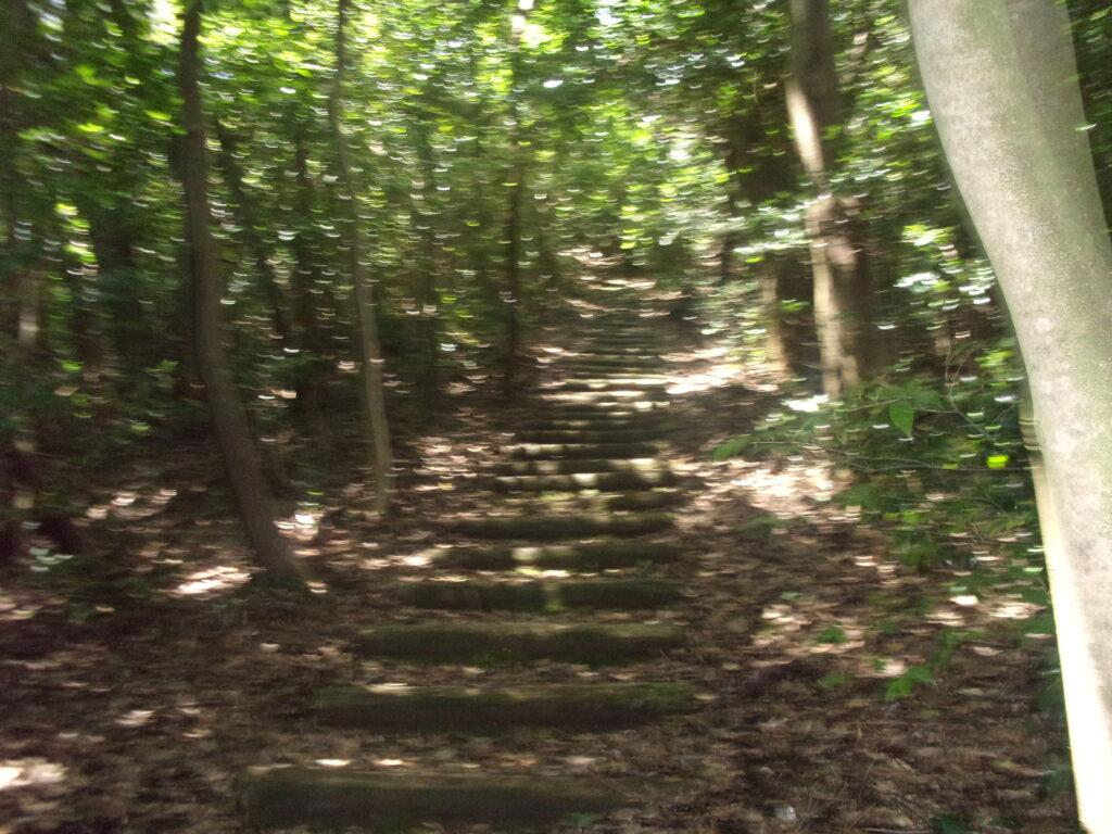 牝鋤崎山への階段