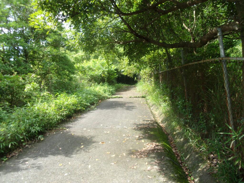 昇仙峰 上り舗装路