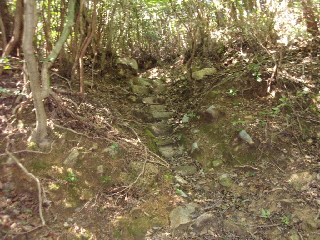 陶ヶ岳登山道 階段