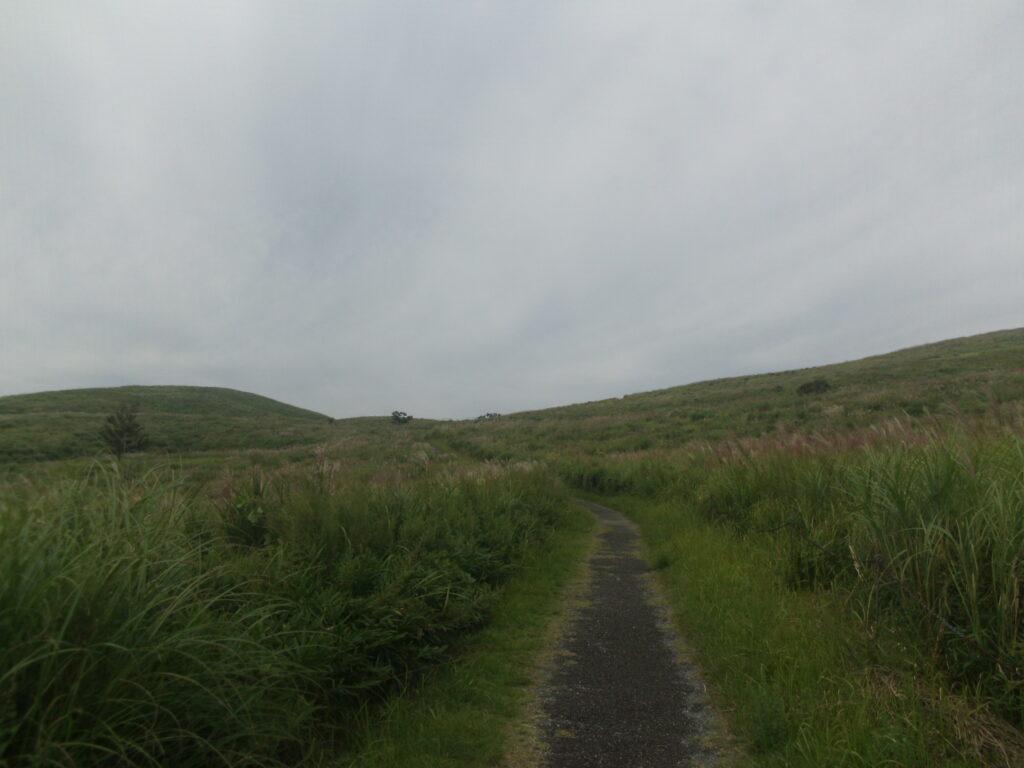 北山・冠山への道