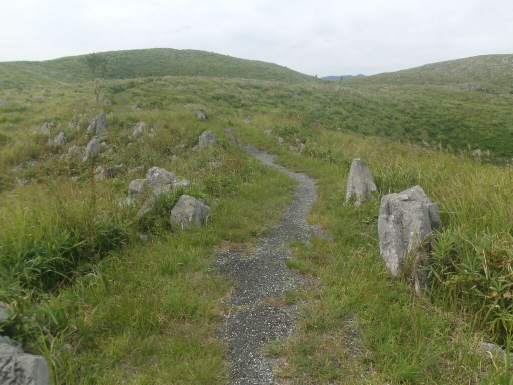 冠山方向への道