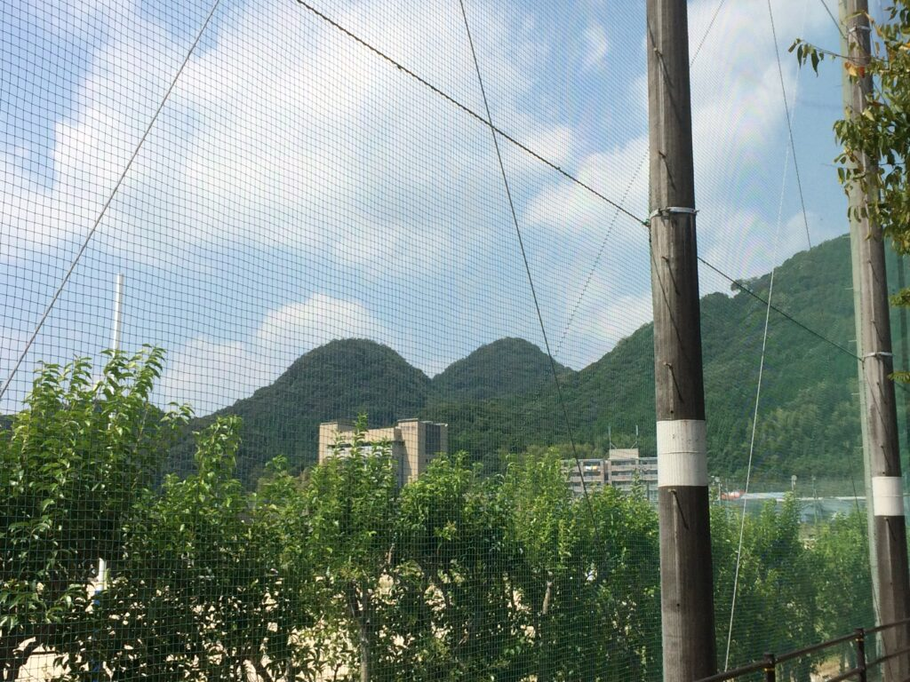 山口高校傍から見る兄弟山(おとどいやま)