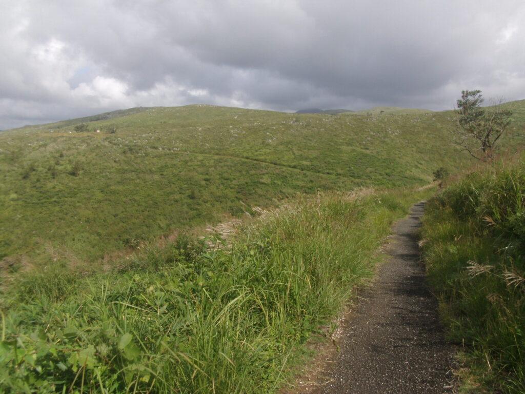 妙見原への道