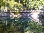 美祢市の別府弁天池