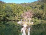 美祢市の白水の池