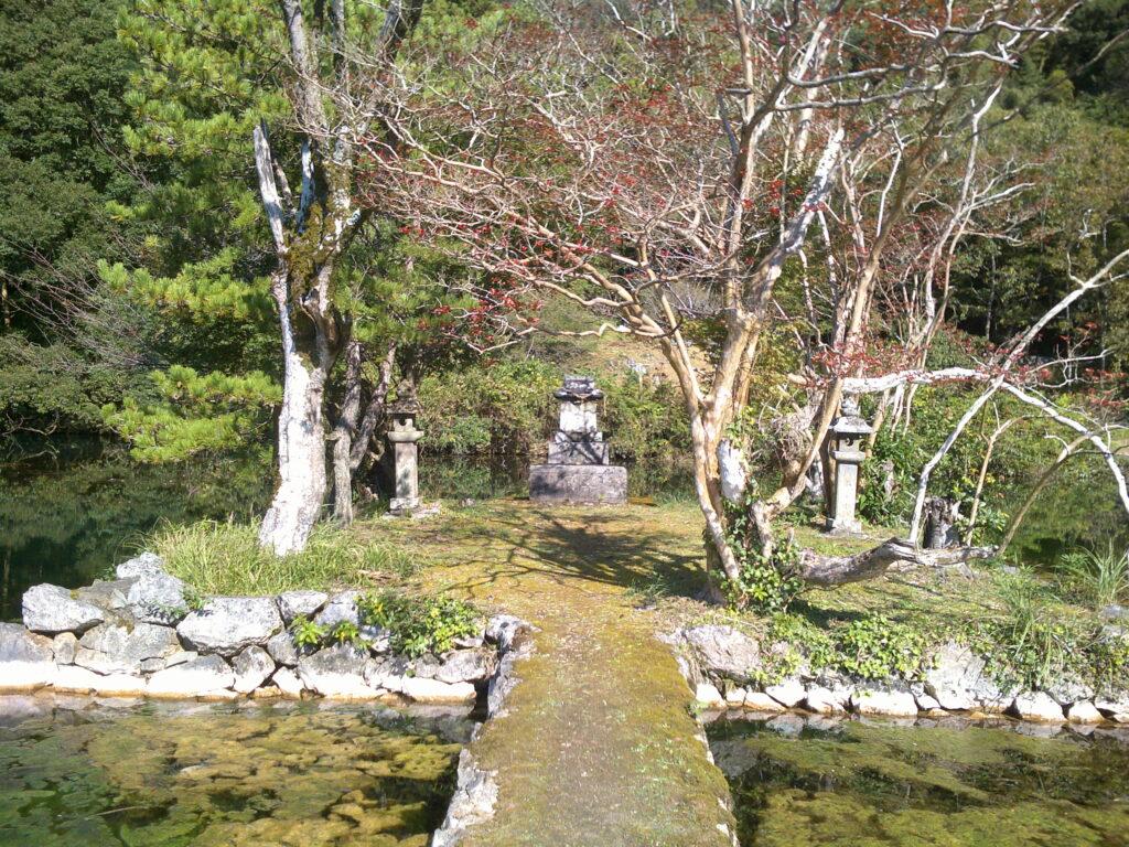白水の池の浮島