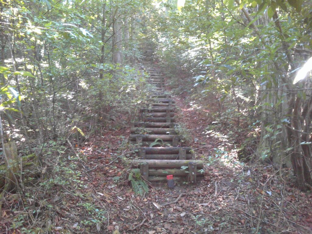 容赦ない階段