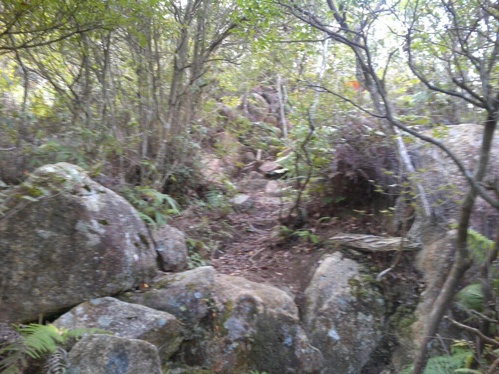岩登りがなかなかきつい