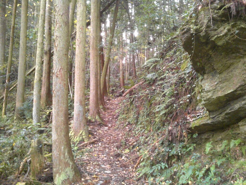旧桂ヶ谷貯水池への山道