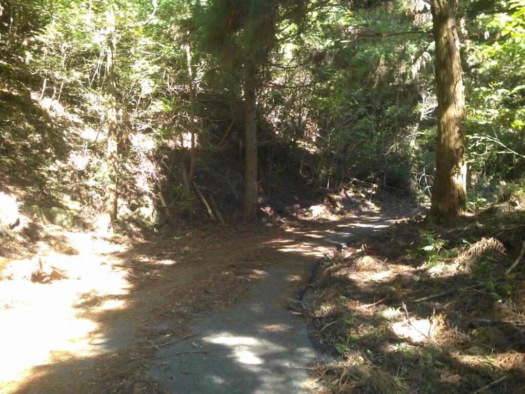 地蔵峠への道2