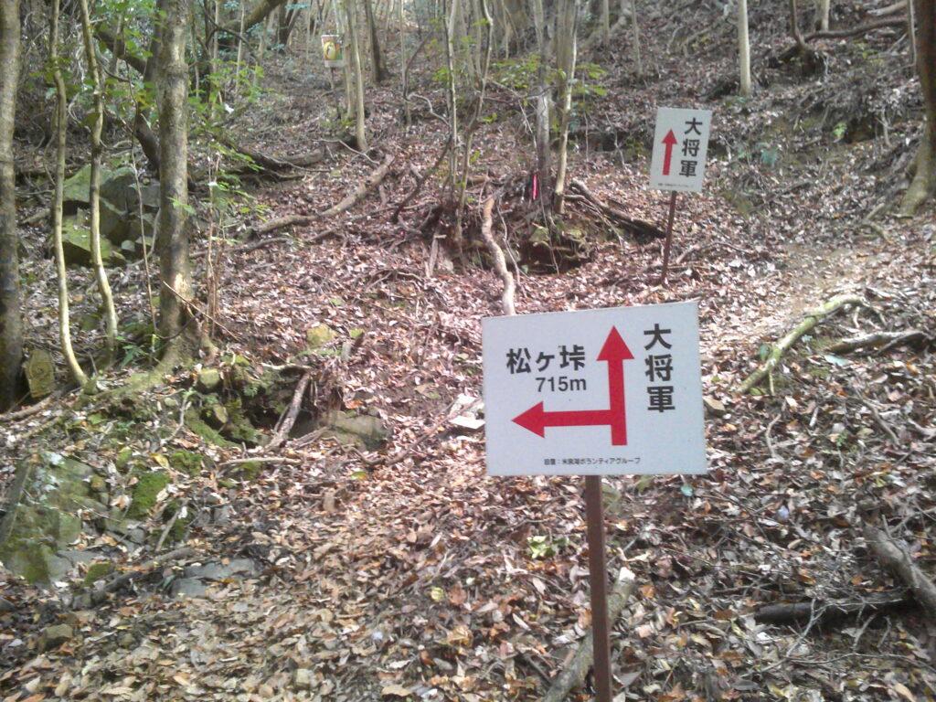 松ヶ峠への分岐