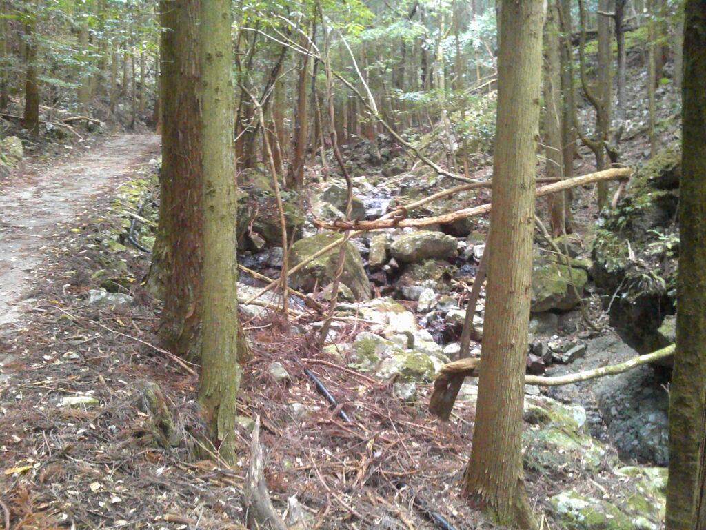 その先もずっと林道