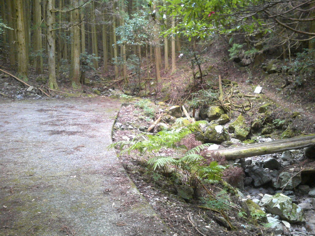 林道の終点