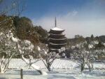 雪の瑠璃光寺でコロナ禍の終息を願う