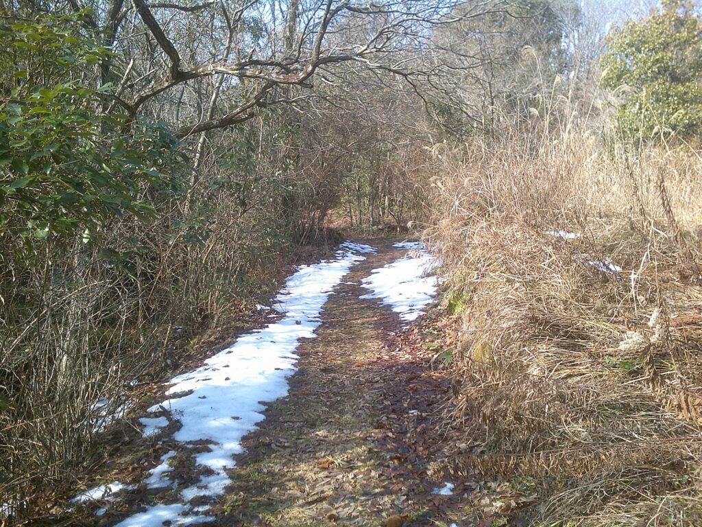 蕎麦ヶ岳登山道入口付近