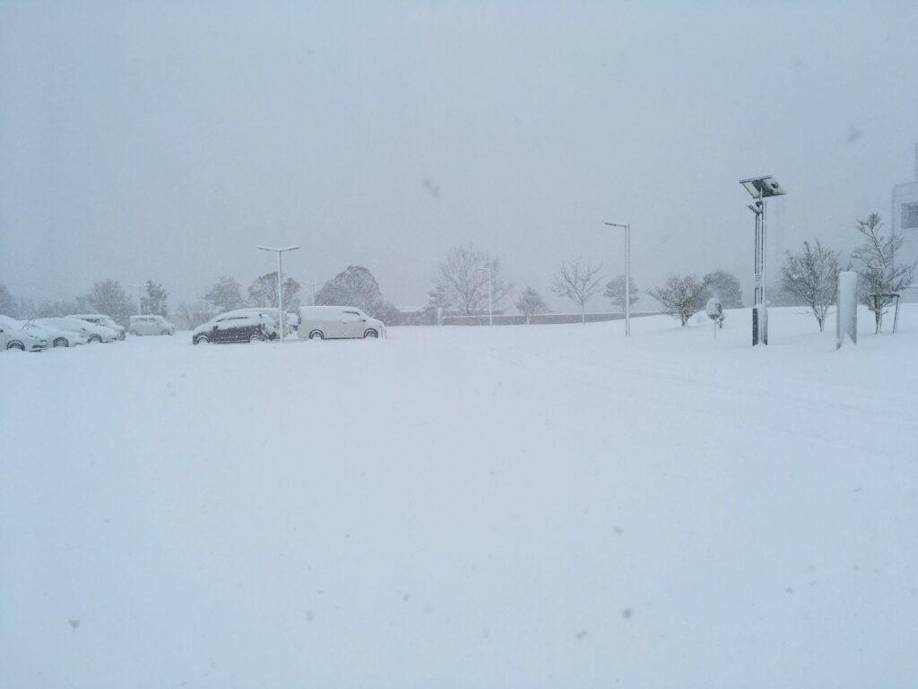金曜日の雪