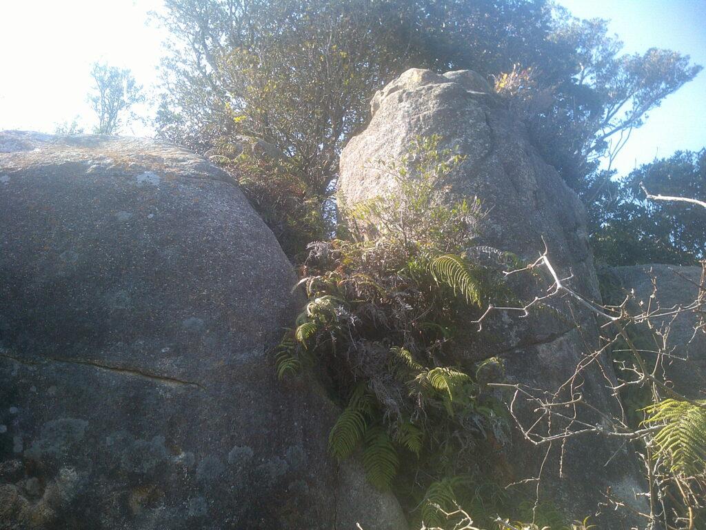 岩がごつごつしてきました