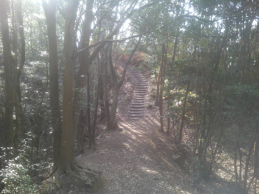 分岐から高見登山口方向