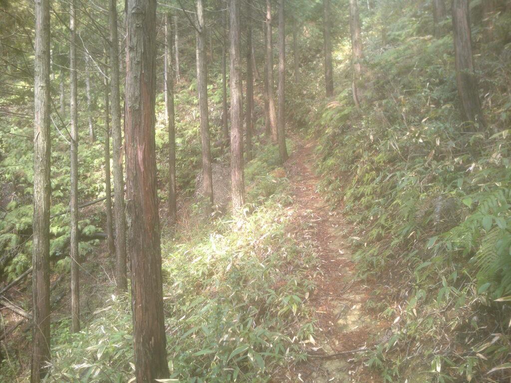崖沿いの道が続く