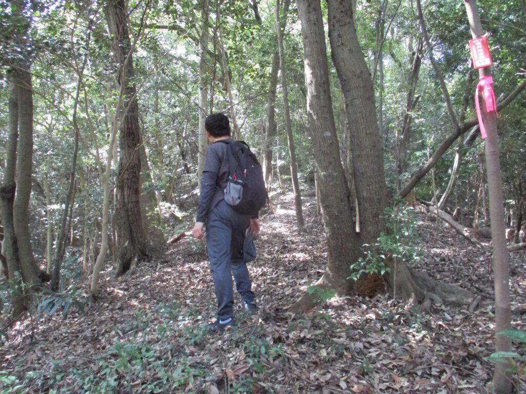 墓所の端から山へ