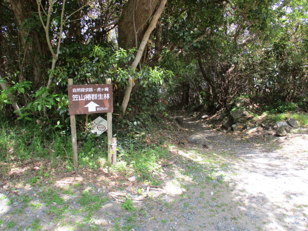 自然探求路・虎ケ埼 笠山椿群生林の看板