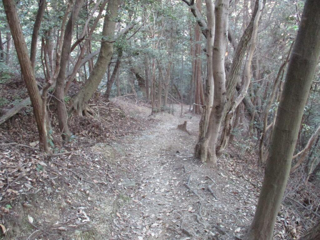 城山(姉ヶ山)下山道