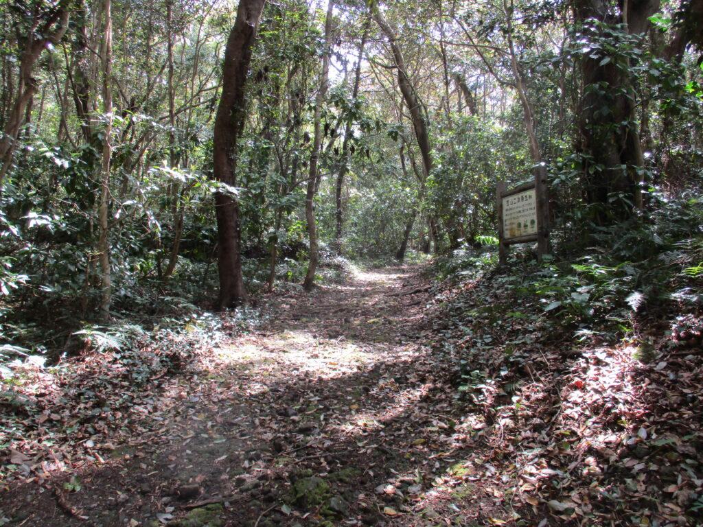 笠山登山道入口