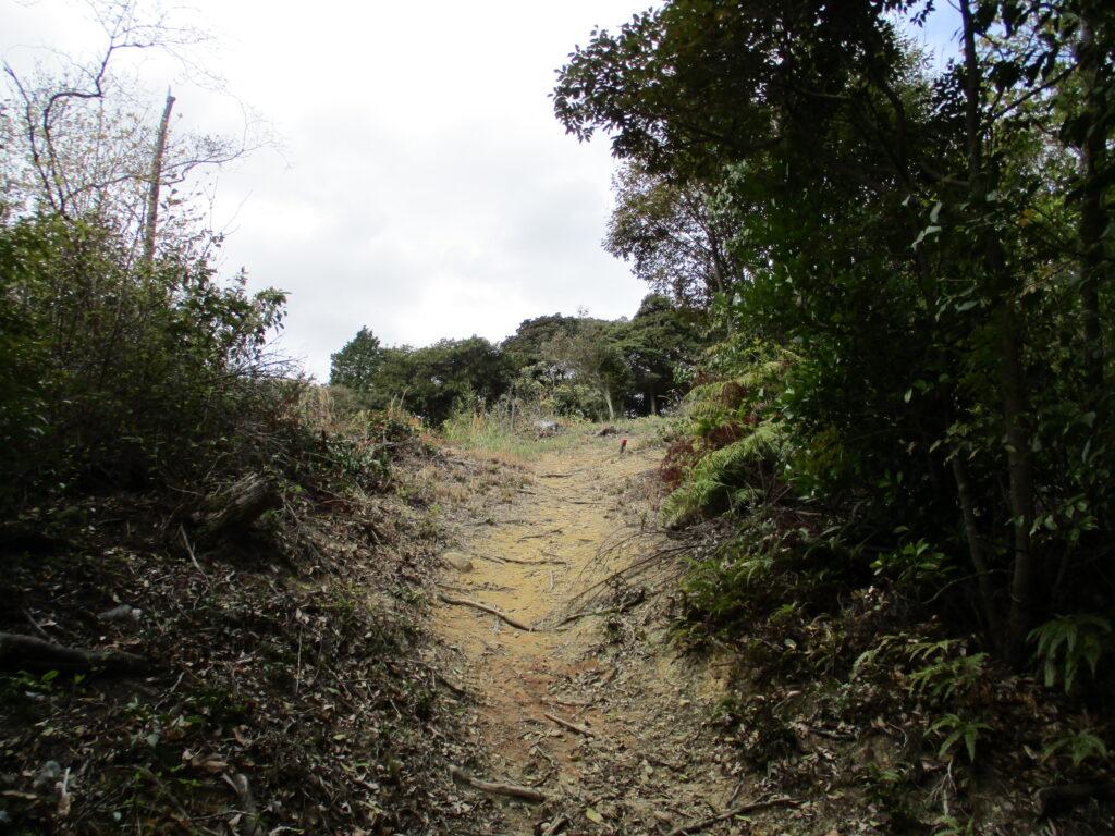 高日ヶ峰(362m)へ