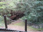【山口県百名山】日本一小さい活火山、笠山を歩いてきたよ