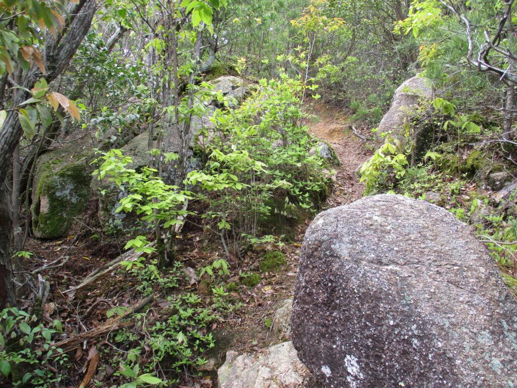岩の坂道を上り