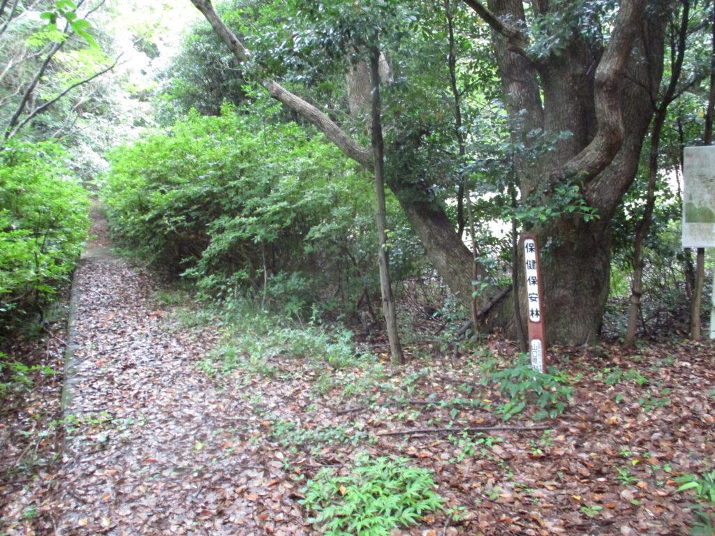 中央公園から熊野神社様へと戻る