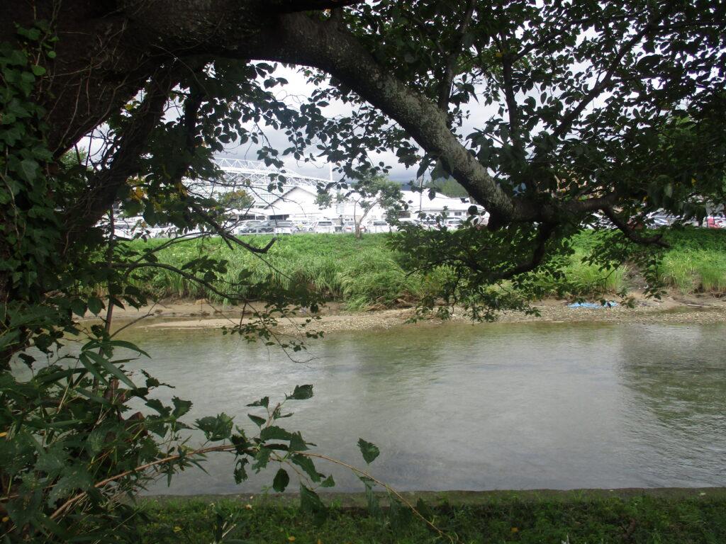 吉敷川の蛇行