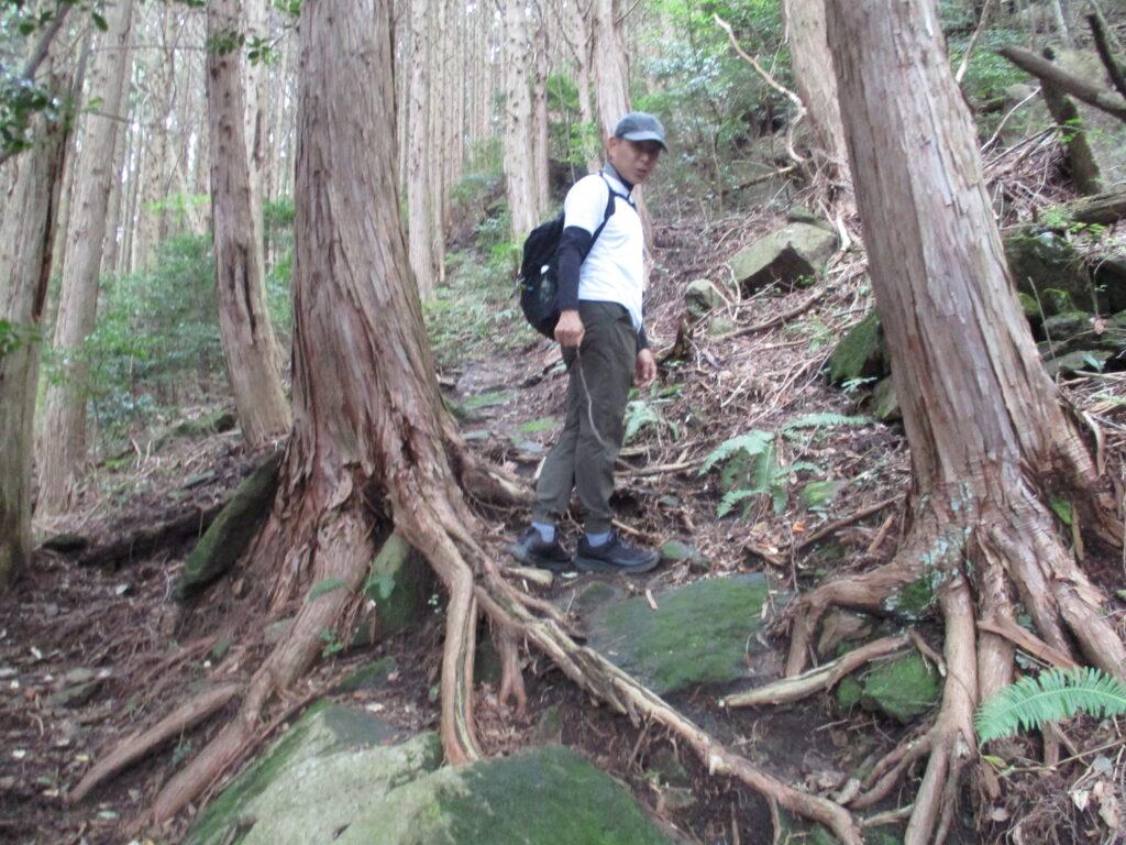 岩と木の根が露出した登り